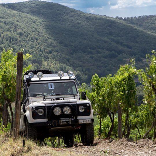 http://www.hotelvillacampomaggio.it/wp-content/uploads/2016/03/jeep-vineyard-chianti-tuscany-540x540.jpg